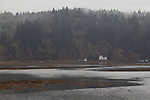 Puget Sound, Hood Canal, Hamma Hamma River, estuary, farmhouse, rain, winter, Washington State, Pacific Northwest, USA,
