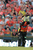8th January 2018, The WACA, Perth, Australia; Australian Big Bash Cricket, Perth Scorchers versus Melbourne Renegades; Josh Inglis of the Perth Scorchers attempts to catch a skied ball but misses his chance during the Renegades innings
