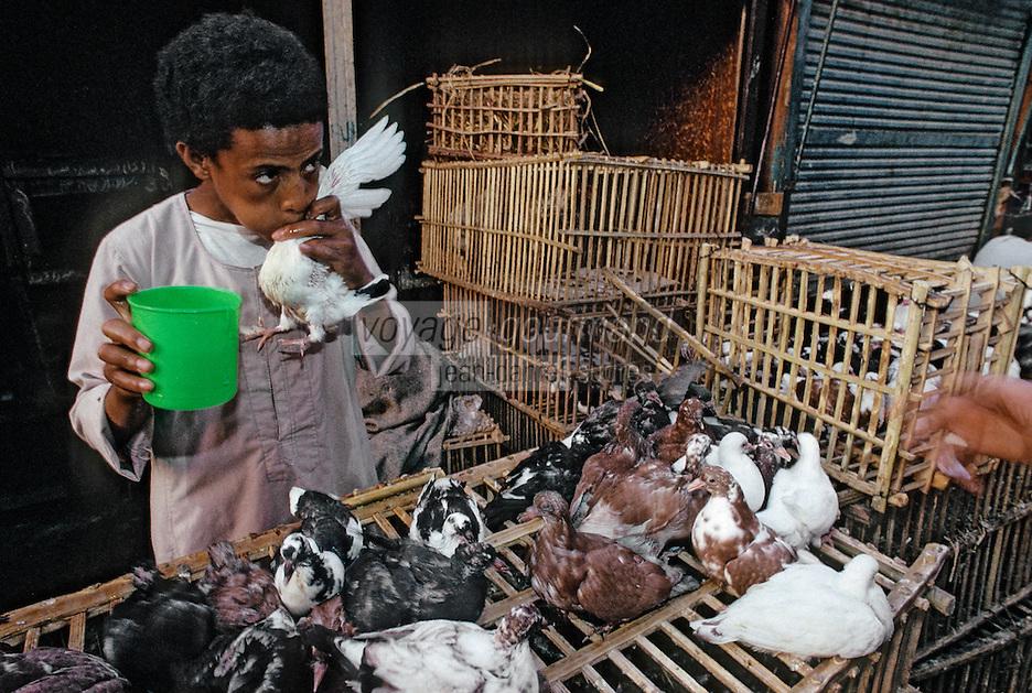 Afrique/Egypte/Assouan: Marchand de pigeons faisant boire ses pigeons dans les souks