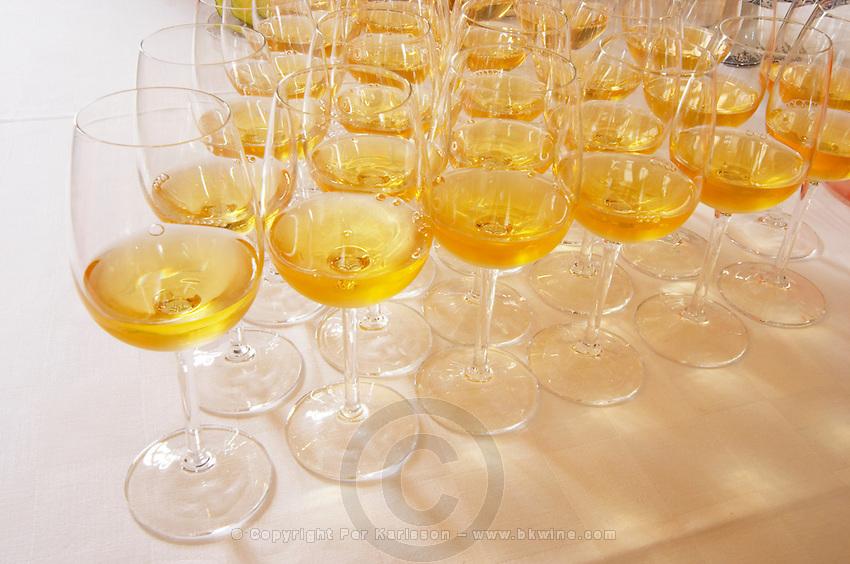 Wine tasting. Wine glasses. Chateau Nairac, Barsac, Sauternes, Bordeaux, France