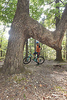 NWA Democrat-Gazette/FLIP PUTTHOFF<br />Siwiec stops Sept. 1 2017 near an unusal tree on the Bashore Loop. Some say the trees were shaped long ago by Native American Indians as signal trees pointing to water, shelter or other features.