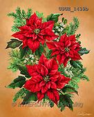 Dona Gelsinger, CHRISTMAS SYMBOLS, paintings+++++,USGE1439B,#xx#