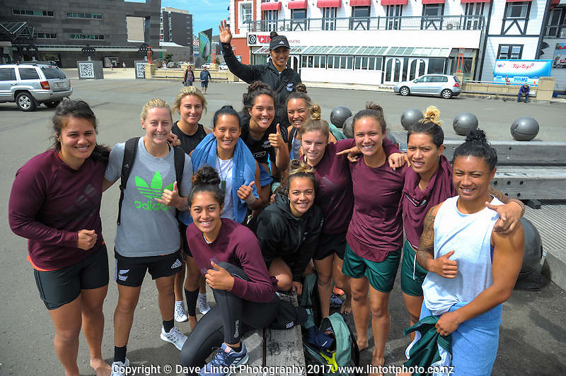 Sevens celebration week Wharf Jump on Wellington harbour waterfront in Wellington, New Zealand on Friday, 27 January 2017. Photo: Dave Lintott / lintottphoto.co.nz