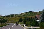 Biking to town.Croatian countryside