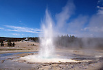 Sawmill Geyser, Yellowstone National Park, Wyoming, USA