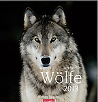 2013 Wolves <br /> <br /> Oversized Wall Calendar<br /> <br /> 13 color photos by Art Wolfe<br /> <br /> International: In English, German, and French<br /> <br /> Oversized at 18x19 inches (46x48cm)