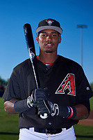 AZL D-backs outfielder Neyfy Castillo (17) poses for a photo before an Arizona League game against the AZL Angels on July 20, 2019 at Salt River Fields at Talking Stick in Scottsdale, Arizona. The AZL Angels defeated the AZL D-backs 11-4. (Zachary Lucy/Four Seam Images)