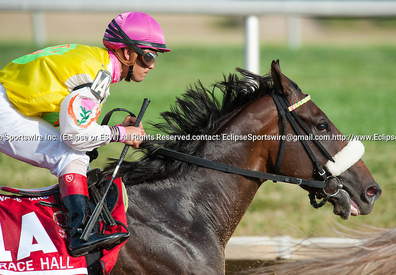 Grace Hall, ridden by Javier Castellano, wins the Delaware Oaks at Delaware Park in Stanton, Delaware on July 14, 2012