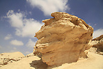 Wadi Havarim in the Negev