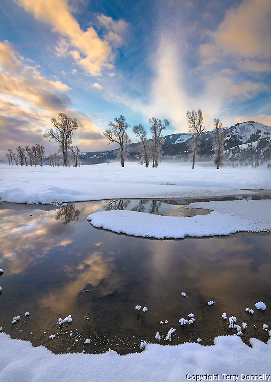 Yellowstone National Park, Wyoming/Montana: Morning clouds reflected in the Lamar River, winter