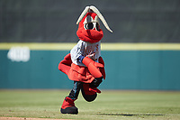 """Hickory Crawdads mascot """"Candy"""" runs across the field between innings of the South Atlantic League game against the Lakewood BlueClaws at L.P. Frans Stadium on April 28, 2019 in Hickory, North Carolina. The Crawdads defeated the BlueClaws 10-3. (Brian Westerholt/Four Seam Images)"""