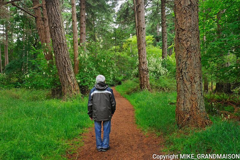 Hiking a trail in Helliwell Park on  HornbyI Island<br />HornbyI Island<br />British Columbia<br />Canada