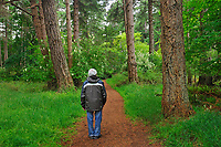 Hiking a trail in Helliwell Park on  HornbyI Island<br />