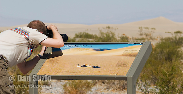 A park visitor steadies his camera on an interpretive sign at Mesquite Flat sand dunes, which features a photo of a sidewinder by wildlife photographer Dan Suzio. Death Valley National Park, California