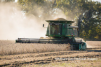 63801-07307 Soybean harvest with John Deere combine in Marion Co. IL