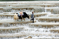 Jade Dragon Snow Mountain, China. <br />