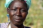 BURKINA FASO, village GOUMSIN near SAPONE, organic and fair trade cotton farming, manual harvest at farm, woman farmer / fair gehandelte Biobaumwolle, Frauen bei der manuellen Ernte