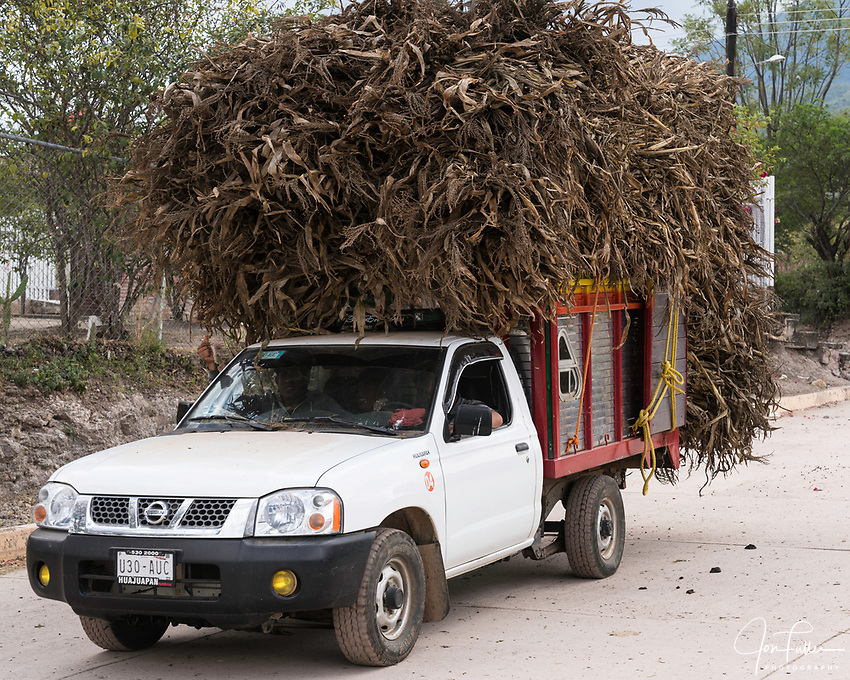 A truck load of fodder to feed the farm animals in San Marcos Tlapazola, Mexico.