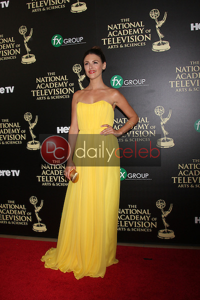 LOS ANGELES - JUN 22:  Elizabeth Hendrickson at the 2014 Daytime Emmy Awards Arrivals at the Beverly Hilton Hotel on June 22, 2014 in Beverly Hills, CA