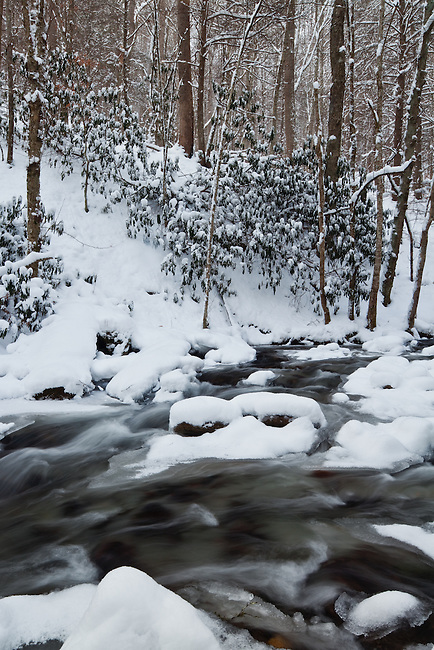 Heavy snow in Doe river, Roan Mountain State Park