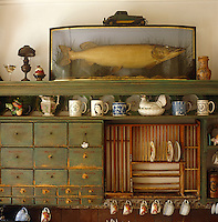 A wall-mounted plate rack and series of drawers is used to display an eclectic collection of crockery and a stuffed fish