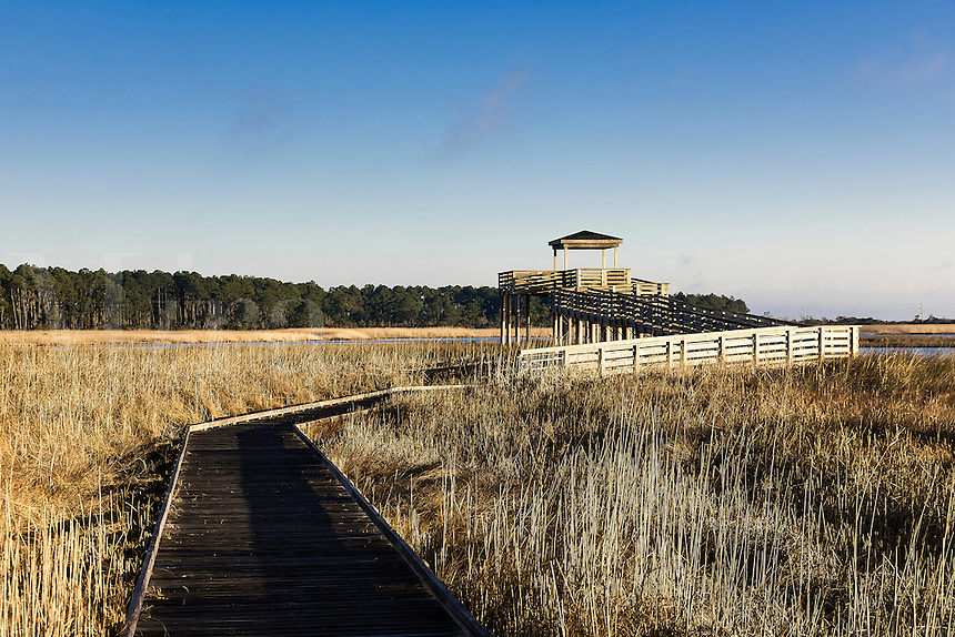 Salt marsh viewing platform atBodie Island Lighthouse, Cape Hatteras National Seashore, North Carolina, USA