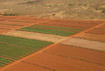 Hawaii: Molokai, aerial view of agriculture..Photo himolo154-71747.Photo copyright Lee Foster, www.fostertravel.com, lee@fostertravel.com, 510-549-2202
