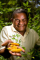 Sao Luis_MA, Brasil...Projeto Quintais Nutritivos, Comunidade do Cajueiro. Na foto morador com pimentoes...Quintais Nutritivos project, Cajueiro community. In this photo a man with peppers...Foto: LEO DRUMOND / NITRO