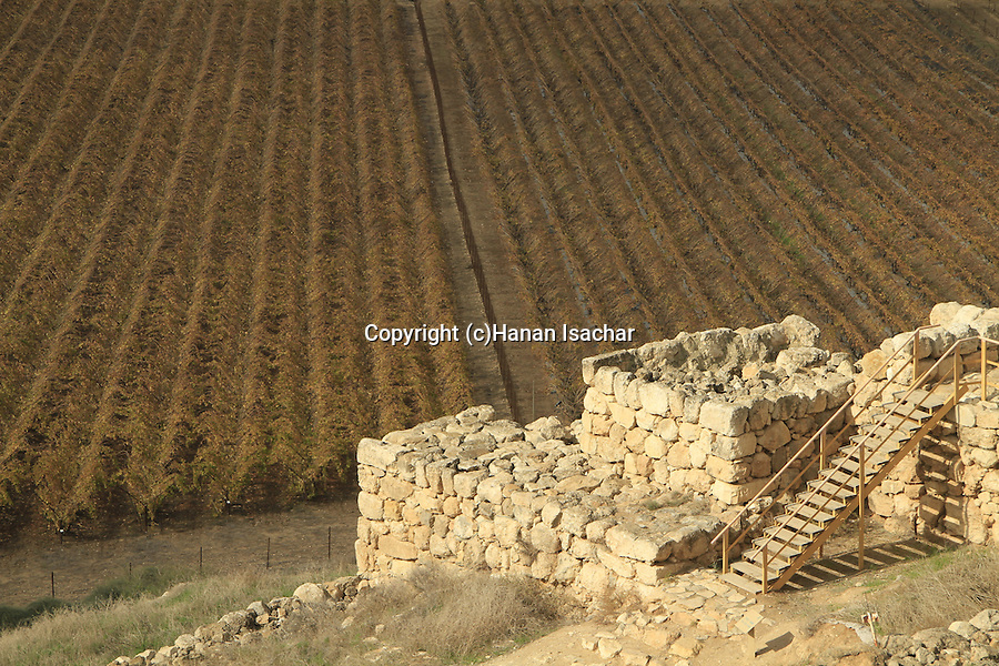 Israel, Shephelah,Tel Lachish, the site of the biblical Lachish, the city gate