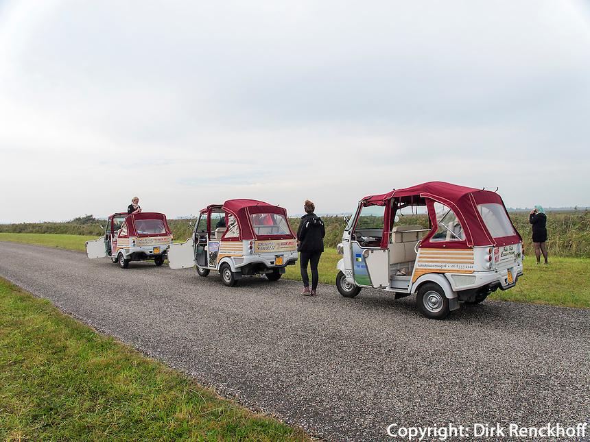 Fahrt im TucTuc  in Lauwersoog, Provinz Groningen, Niederlande
