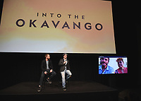 """12/4/18 - Hollywood:  National Geographic's """"Into the Okavango"""" Premiere & Reception"""