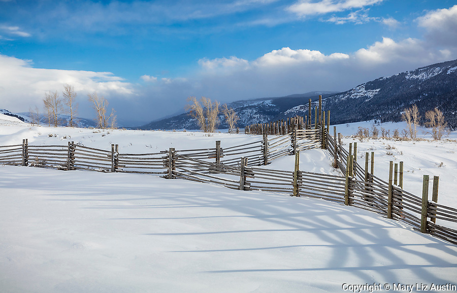 Yellowstone National Park, WY: Shadows of corral fence line in afternoon light at the Lamar Buffalo Ranch in Lamar Valley.