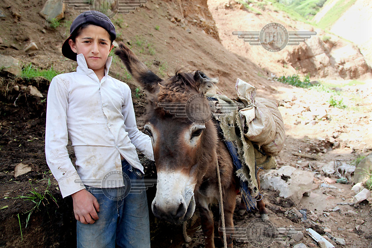 Usmon, 11, carries construction material with the help of a donkey, as helps his uncle when he is not at school.