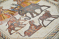 African animals and fish from the 3rd century Roman mosaic villa floor from Lod, near Tel Aviv, Israel. The Roman floor mosaic of Lod is the largest and best preserved mosaic floor from the levant region along the eastern Mediterranean coast. It is unclear whether the owners were Jewish, Christian or pagan but either way they would have been wealthy to own such a magnificent floor. The Shelby White and Leon Levy Lod Mosaic Centre, Lod, Israel.