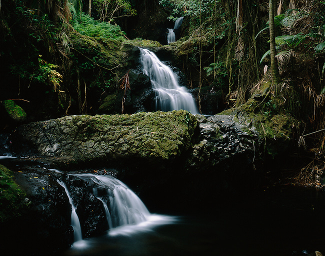 Onomea Falls; Island of Hawaii; Hawaii