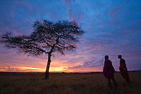 Masai tribesman, Masai Mara, Kenya, Africa