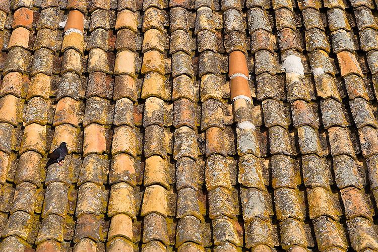 Close-up of terra-cotta roof, Dubrovnik's old city (stari grad), Croatia