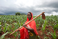Morogoro, agriculture