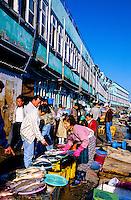 Chagalchi Fish Market, Pusan (Busan), South Korea