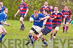 Killorglin v Castleisland Rugby