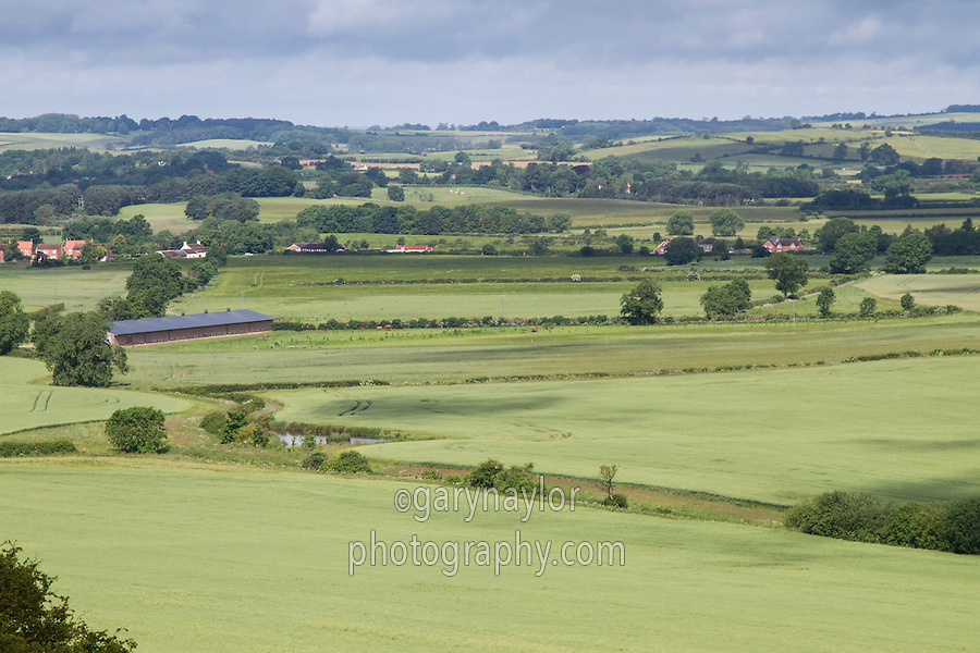 View of Lincolnshire Wolds - June