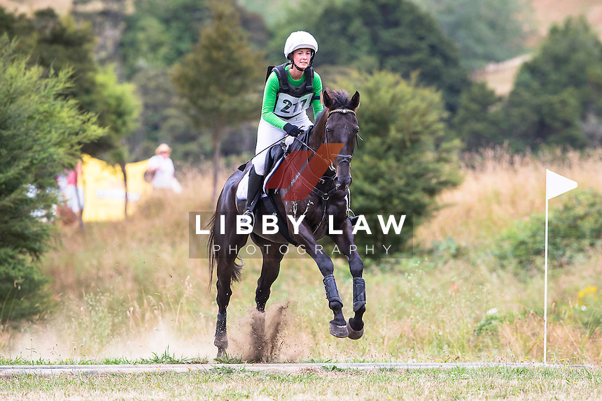 NZL-Sarah Boles (OLLIE) 2A NZPC 95: 2015 NZL-Hunua Pony Club ODE (Sunday 1 February) CREDIT: Libby Law COPYRIGHT: LIBBY LAW PHOTOGRAPHY