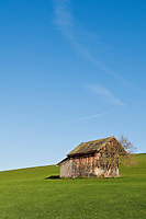 Small wooden barn in grass field, Allgaeu region, Bavaria, Germany
