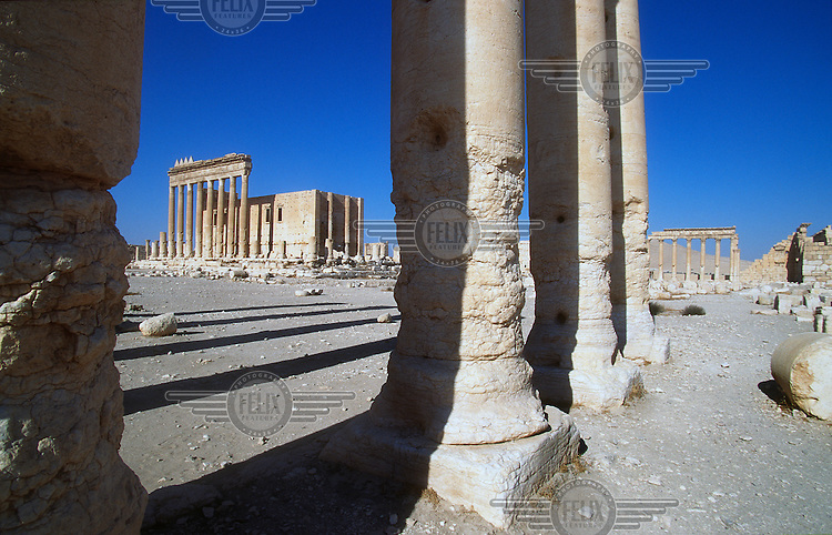 View of the ancient ruins of Palmyra, through columns to the Temple of Baal (Bel). Palmyra (or Tadmor in Arabic) dates back to the Neolithic period and was first mentioned in the second millennium BC as a caravan stop. It later came under the Seleucid Empire and then under the Roman Empire.<br /> In May 2015 Islamic State (IS) forces fighting the Syrian government of President Assad took control of the modern settlement of Tadmur and the historic site. There are fears that the priceless treasures could fall victim to IS's iconoclastic destruction that has seen museums and ancient sites across Syria and Iraq destroyed.