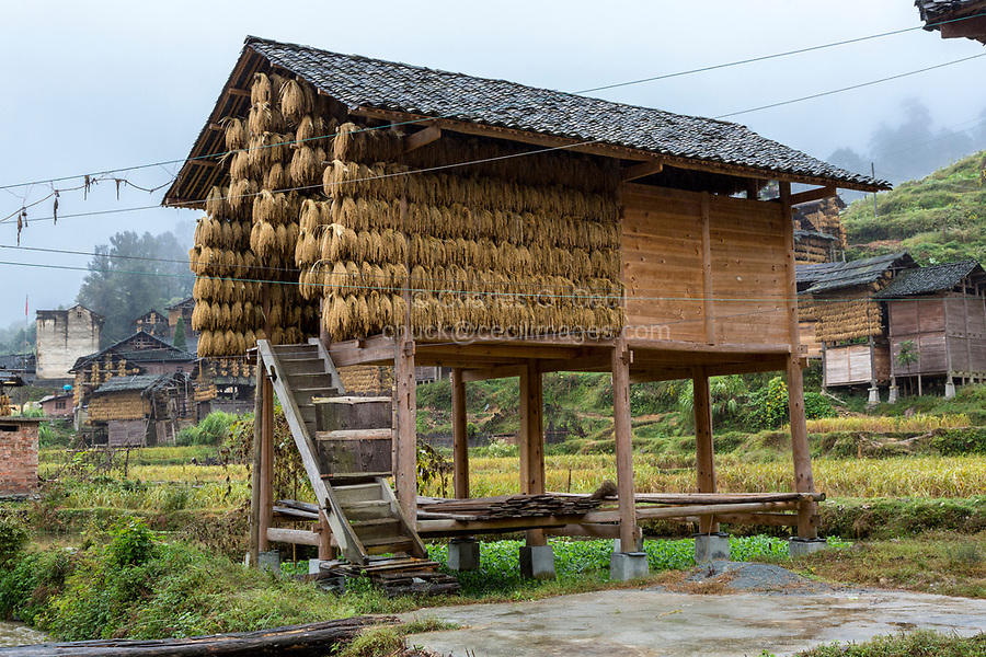 Huanggang, Guizhou, China.  A Dong Ethnic Village.  Small House with Rice Drying under the Eaves.