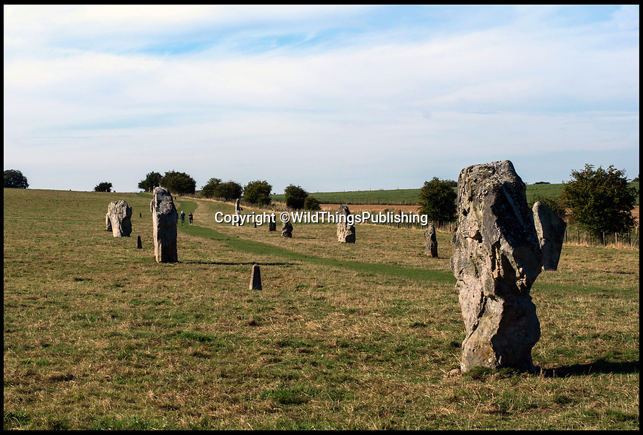 BNPS.co.uk (01202 558833)<br /> Pic: WildThings/BNPS<br /> <br /> Avebury in Wiltshire.<br /> <br /> Walk back in Time - new travel book reveals Britain's ancient places.<br /> <br /> An explorer has travelled the length and breadth of Britain to document over 400 mysterious little known ancient sites.<br /> <br /> Dave Hamilton ventured off the beaten track to uncover wild ruins which have stood for between 2,000 and 10,000 years.<br /> <br /> He avoided famous sites like Stonehenge, instead focusing on little-known lost ruins scattered across the country.<br /> <br /> His travels saw him encounter sacred tombs and caves, stone circles, Bronze Age brochs and Iron Age hillforts.