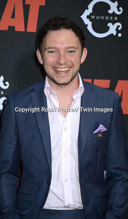 """Nate Corddry attends the New York Premiere of """"The Heat"""" on June 23,2013 at the Ziegfeld Theatre in New York City. The movie stars Sandra Bullock, Melissa McCarthy, Demian Bichir, Marlon Wayans, Joey McIntyre, Jessica Chaffin, Jamie Denbo, Nate Corddry, Steve Bannos, Spoken Reasons and Adam Ray."""
