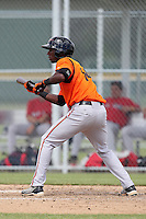 Baltimore Orioles outfielder Dudley Leonora #14 during an Instructional League game against the Boston Red Sox at Buck O'Neil Complex on October 6, 2011 in Sarasota, Florida.  (Mike Janes/Four Seam Images)