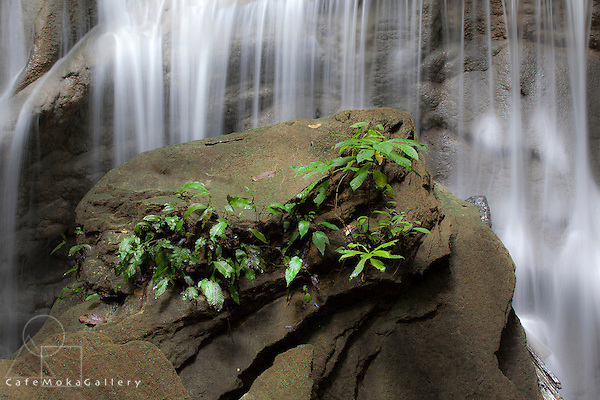 Waterfall in a limestone river