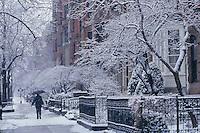 Commonwealth Avenue winter snow, Boston, MA
